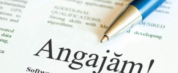 AJOFM: 287 de locuri de muncă disponibile în județul Dâmbovița