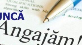 """40 de persoane private de libertate, """"cazate"""" în Penitenciarele Mărgineni și Găești, își caută loc de muncă"""