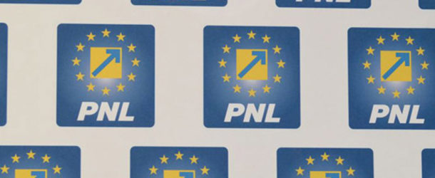 PNL Dâmbovița: Familia Plumb cu ochii pe banii publici